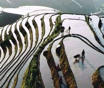 Всемирный банк  помог процессу обучения крестьян КНР