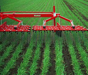 АБР выделил $95 млн китайской сельскохозяйственной компании