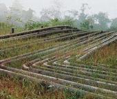 Китайское ответвление ВСТО начнут строить весной