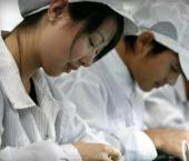 Стремительно развивается сфера промышленных биотехнологий КНР