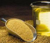 Китай постоит завод по производству масла в Туле