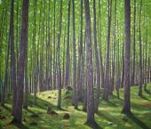 Валовая продукция лесного хозяйства КНР превысила $1,07 трлн