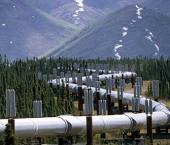 В Китай поступило 10,88 млн т нефти из Казахстана