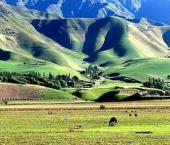 Внешняя торговля Внутренней Монголии поднялась на 5,9%