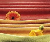 образцы тканей для одежды.