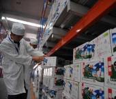 Китайское молоко проверят на безопасность