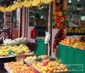 Россия увеличивает импорт овощей и фруктов из Китая