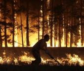Китай потушит российские пожары