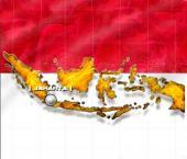 Товарооборот КНР и Индонезии вырос на 56%