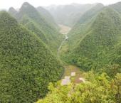 Китай выделяет 240 млрд юаней на защиту лесов