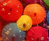 Китайские зонтики: на две недели и не только