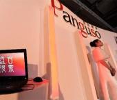 В Китае появилась национальная поисковая система Panguso