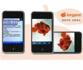 Китайский клон iPhone может появиться в России