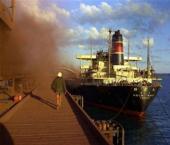 Первое судно с рудой от Rio Tinto прибыло в КНР