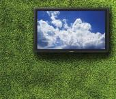 TCL заняла 3-е место среди производителей телевизоров мира