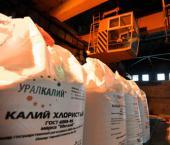 """CIC получила в собственность 12,5% акций """"Уралкалия"""""""